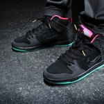 Premier x Nike SB Dunk High Northern Lights